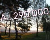 CA de 290'000.-